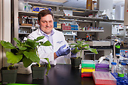 Assistant Professor Michael Held, Biochemistry Research Facility Ohio University. © Ohio University / Photo by Jonathan Adams