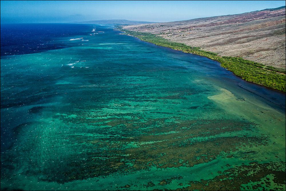 Southern coast reef, Molokai, Hawaii