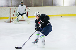 Gasper Kopitar during practice session with his brother Anze Kopitar, NHL star and player of Los Angeles Kings before departure to USA, on September 3, 2014 in Ledna dvorana Bled, Slovenia. Photo by Vid Ponikvar  / Sportida.com