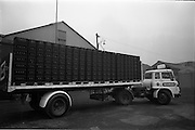 04/03/1964<br />