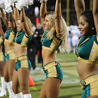 A USF Bulls cheerleaders dance on the sidelines during an NCAA football game between the South Florida Bulls and the 17th ranked University of Central Florida Knights at Bright House Networks Stadium on Friday, November 29, 2013 in Orlando, Florida. (AP Photo/Alex Menendez)