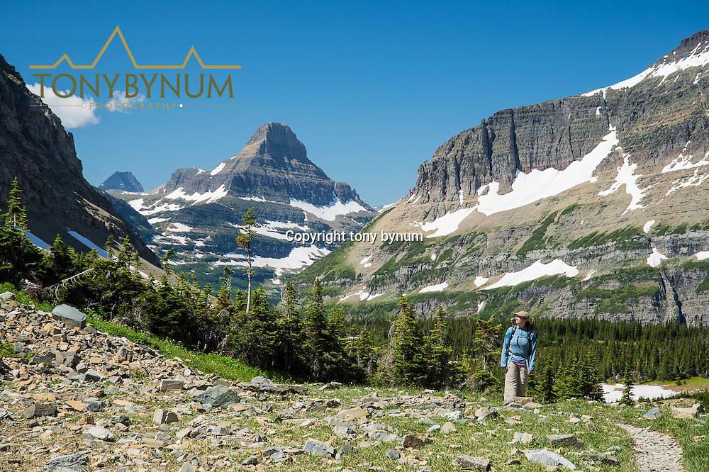 glacier national park preston park siyeh pass