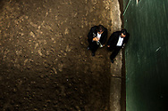 Two trumpet players approach the track at Santa Anita Park before performing the notes of the popular horse racing song First Call used to announce the entrances of the horses and its jockeys to the track prior the start of the race.