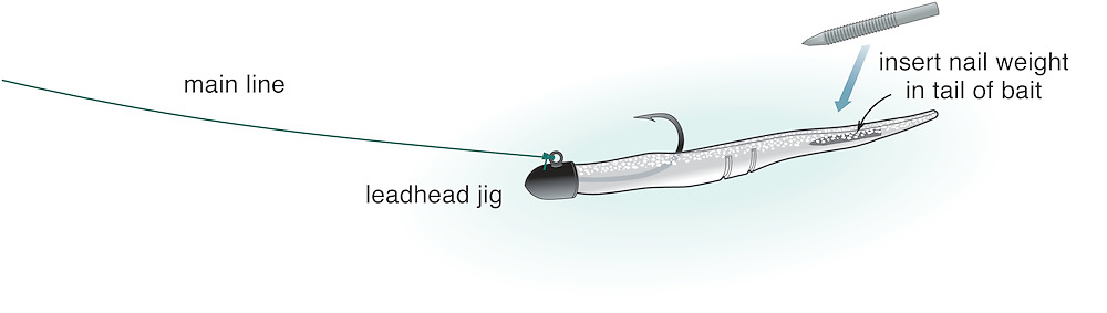 A vector illustration of a Sluggo Jig