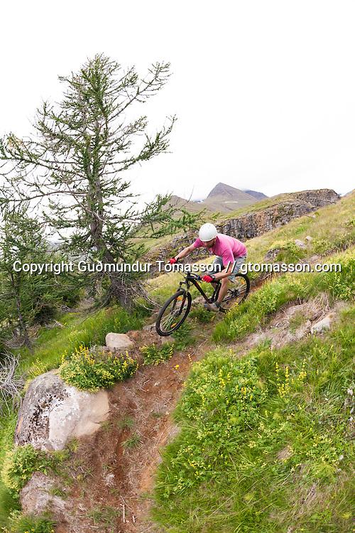 Óliver Hilmarsson mountain biking at Þverá, Skíðadalur, North, Iceland.