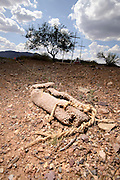 A carpet shoe or shoe covering that is typically used by smugglers on foot to disrupt tracking by law enforcement sits along reservation Route 30 in the Sonoran Desert on the Tohono O'odham Nation, Comobabi, Arizona, USA.