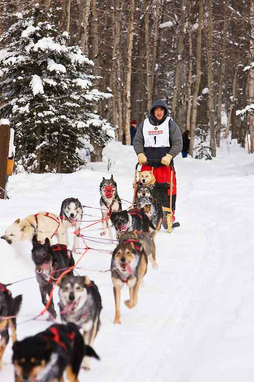 Musher John Hanson and sled dogs in the Fur Rendezvous World Sled Dog Championships on the Campbell Creek Trail in Anchorage, Alaska. Southcentral. Afternoon.