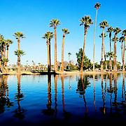Phoenix Arizona photographs