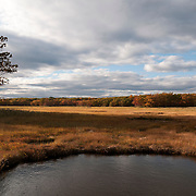The Great Marsh as seen from Rowley Massachusetts is a 20,000 acre coastal ecosystem. It is protected and managed by several public and private organizations.