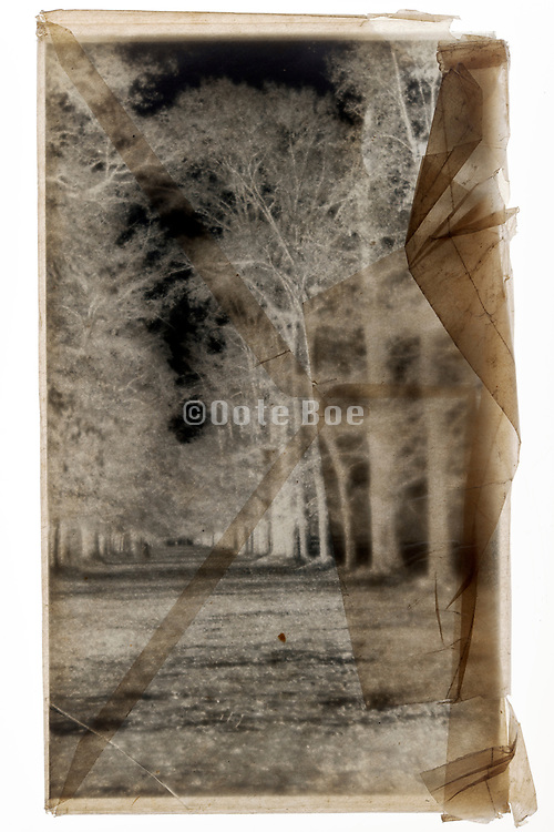 glass plate negative with trees lined path in semi transparent protective envelope
