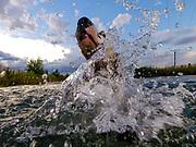 """English Setter Welpe """"Rudy"""" schwimmt am 30.07. 2017 im Teich von Stara Lysa, (Tschechische Republik).  Rudy wurde Anfang Januar 2017 geboren und ist vor einiger Zeit zu seiner neuen Familie umgezogen."""