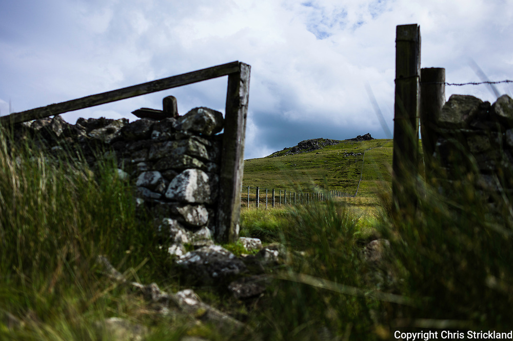 The Schil, Yetholm, Scottish Borders, UK. 22nd July 2015. Looking south east at The Schil along the Pennine Way on the Scottish English border (Scotland to the right of the fence line).