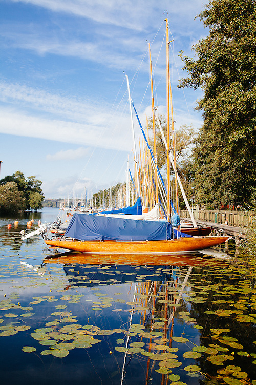 Boats surrounded by waterlillies on Lake Malaren, Långholmen, Stockholm