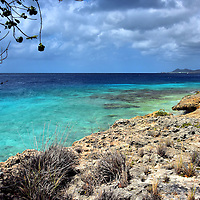 Leeward Coastline North of Kralendijk, Bonaire<br /> The northern leeward side of Bonaire, from Kralendijk until the no diving zone near Lake Gotomeer, has 23 marked dive sites. Here you will find the water calm and shallow, gorgeous shades of blue plus the perfect water temperature ranging from 78&deg; to 86&deg; F.  Local divers tend to have their favorite locations.  However, almost any spot along this coastline is beautiful above and below the water. No wonder Bonaire&rsquo;s license plates read &ldquo;Divers&rsquo; Paradise.&rdquo;