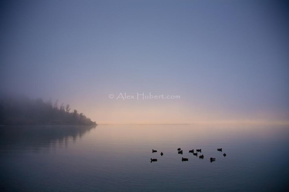 Winter fog on Lake Wakatipu