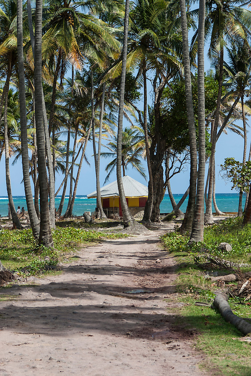 palm lined path leads to hut by the beach and emerald green waters of Spring Bay Bequia
