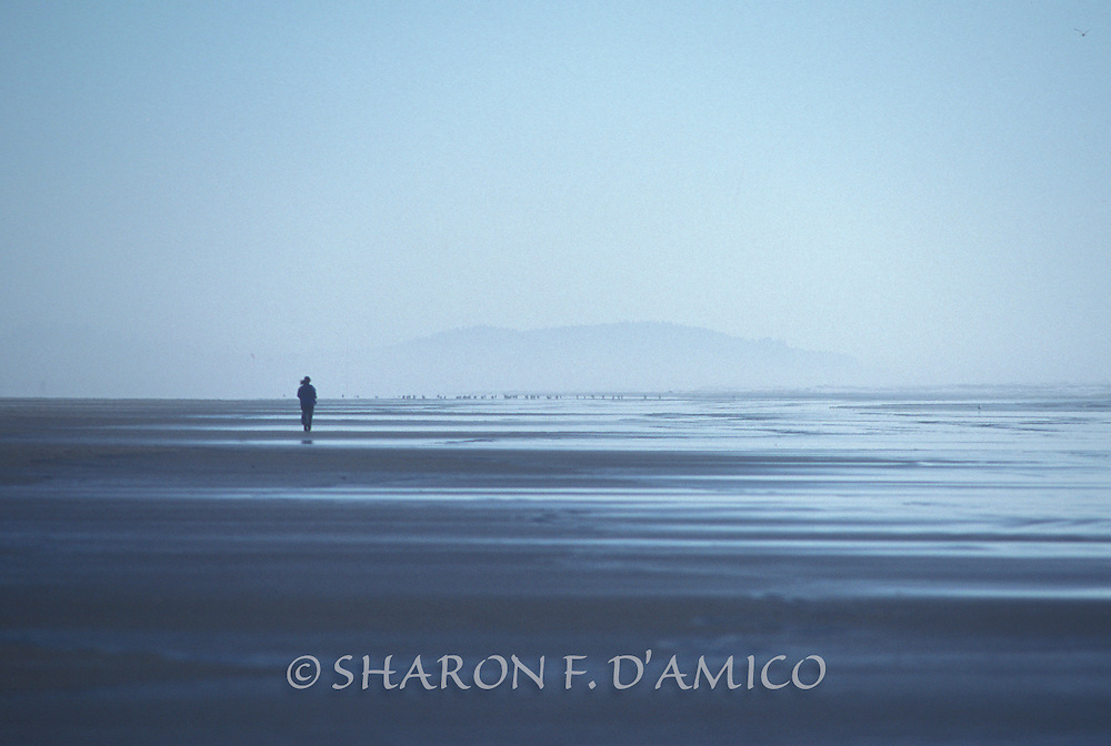 A Woman Runs Along the Empty Shoreline in Evening Fog.