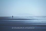 A Woman Runs Along the Empty Shoreline in Evening Fog.