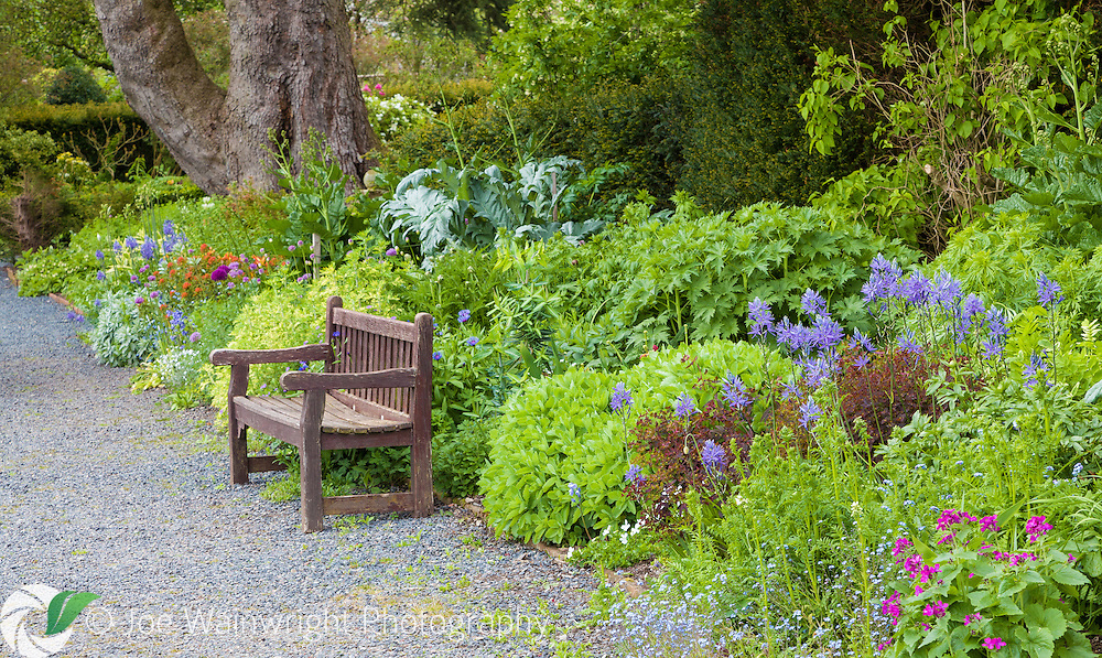 The Terrace Garden at Dalemain, Cumbria - photographed in May
