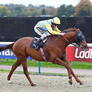 Billy Red and Joe Fanning winning the 2.20 race