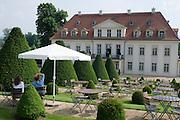 Weingut Schloss Wackerbarth, Radebeul bei Dresden, Sachsen, Deutschland.|.Castle Wackerbarth, vinery, in Radebeul near Dresden, Germany