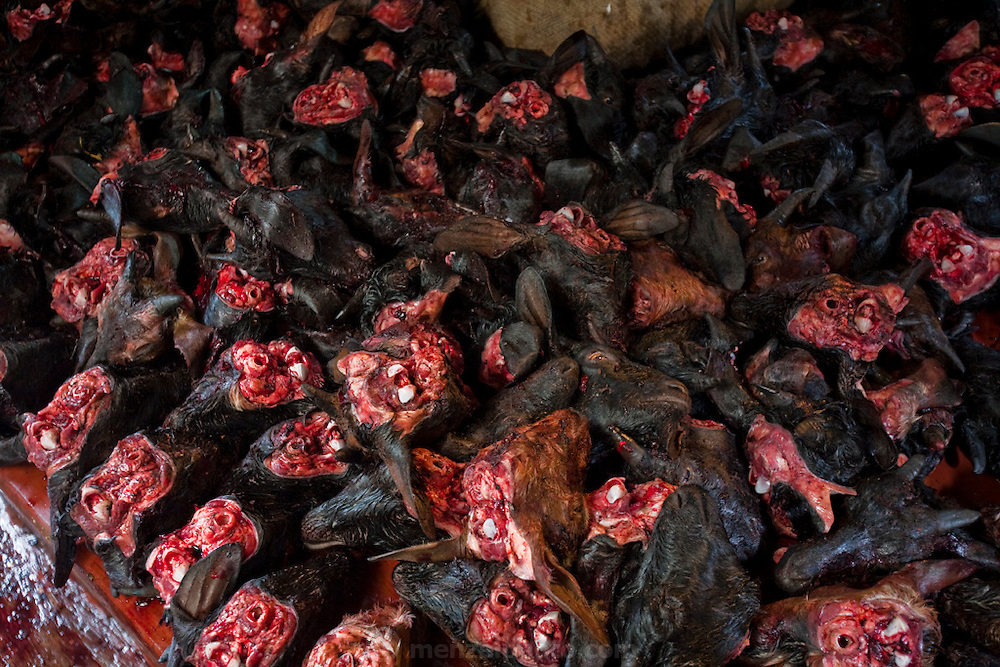 A basketful of goat heads is displayed at the busy Santinagar Market in   Dhaka, Bangladesh.