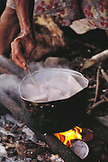 Taro root cooking on a fire in the kitchen house of the Lagavale family's home. Western Samoa. The Lagavale family lives in a 720-square-foot tin-roofed open-air house with a detached cookhouse in Poutasi Village, Western Samoa. The Lagavales have pigs, chickens, a few calves, fruit trees and a vegetable garden. Material World Project.