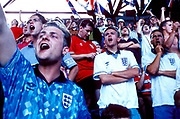 England fans cheering on their team, Wembley Stadium, UK 1990's