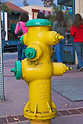 USA, Santa Cruz California, a decorated fire hydrant
