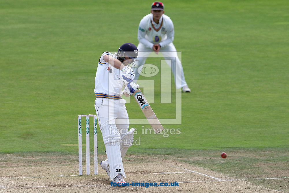 Adam Lyth of Yorkshire CCC in batting action during the Specsavers County C'ship Div One match at Headingley Carnegie Cricket Ground, Headingley<br /> Picture by Robert Smith/Focus Images Ltd 07837 882029<br /> 08/09/2016