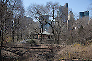New York , Central park in winter