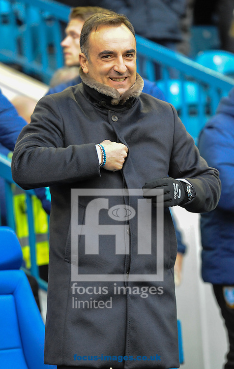 Carlos Carvalhal Manager of Sheffield Wednesday during the Sky Bet Championship match at Hillsborough, Sheffield<br /> Picture by Richard Land/Focus Images Ltd +44 7713 507003<br /> 05/11/2016