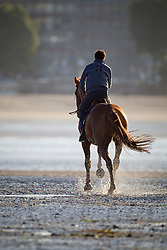 Relexation on the beach<br /> Lejeune Philippe on Carlina, his son Philippe Junior on Vigo d'Arsouilles and .. on Querlybet Hero <br /> CSIO La Baule 2011<br /> © Dirk Caremans