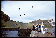 Kids toss puffin chicks out to sea after rescuing them the night before on Heimaey; August Iceland