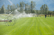 Watering sod at Country Garden Farm in Palmer.