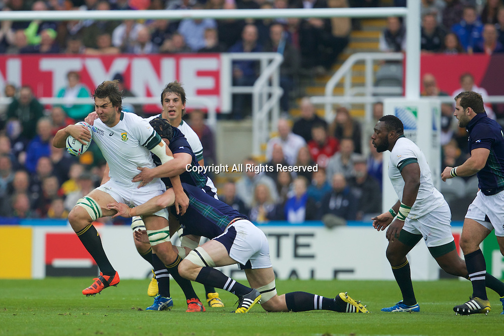 03.10.2015. St James Park, Newcastle, England. Rugby World Cup. South Africa versus Scotland. South Africa lock Lodewyk de Jager.