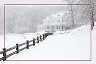 2010 Winter Snow Storm