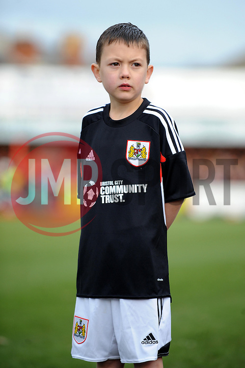 Mascot - Photo mandatory by-line: Dougie Allward/JMP - Tel: Mobile: 07966 386802 08/12/2013 - SPORT - Football - Tamworth - The Lamb Ground - Tamworth v Bristol City - FA Cup - Second Round