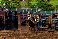 Bareback riding competition, Snowmass Rodeo, Snowmass Village (Aspen), Colorado USA.