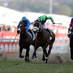 General views during RACE 6 DURBAN GOLDEN HORSESHOE (Grade 2) - 1400m - R600 000 at THE VODACOM DURBAN JULY at Greyville Racecourse in Durban, South Africa on 1st July 2017<br /> Photo by:  Steve Haag Sports