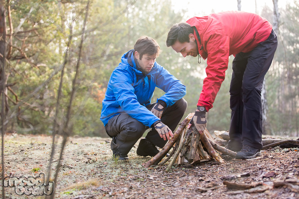 Male hikers arranging firewood in forest