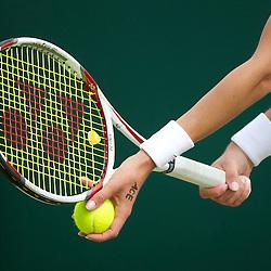20110622: UK, Tennis - Wimbledon Tennis Championships