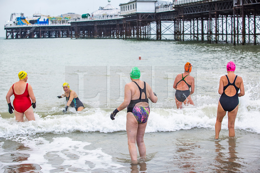 © Licensed to London News Pictures. 16/11/2019. Brighton, UK. Members of the Brighton Swimming Club brave the very cold weather to go for a swim in the sea in Brighton and Hove. Photo credit: Hugo Michiels/LNP