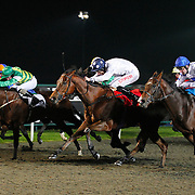 Dutchartcollector and George Baker winning the 5.50 race
