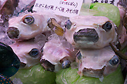 Naha City Public Market. Fresh skinned pufferfish.
