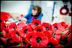 OCT 08 2014 Poppys being made