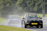 #24 Rob Austin Mini Cooper S during the MINI Challenge - Cooper S, Cooper & Open at Oulton Park, Little Budworth, Cheshire, United Kingdom. August 20 2016. World Copyright Peter Taylor/PSP.