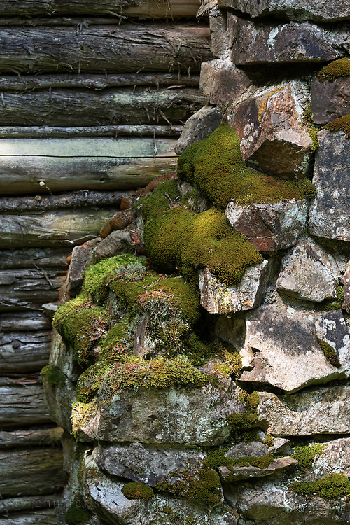 Moss growing on the stone chimney of a log cabin on Isle au Haut, Maine, USA
