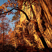 October 25, 2009 - Slade, Kentucky, USA - Trees along sandstone cliffs in the Natural Bridge State Park show their colors during what was expected to be the peak weekend for fall color in the area. (Credit image: © David Stephenson)