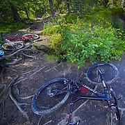 Niner bikes sitting waiting for the light in Alaska.